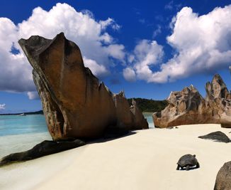 Las Islas Seychelles Un Mar Por Conocer Ebiz Africa Review